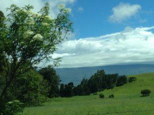 ハワイ島ドライブ5
